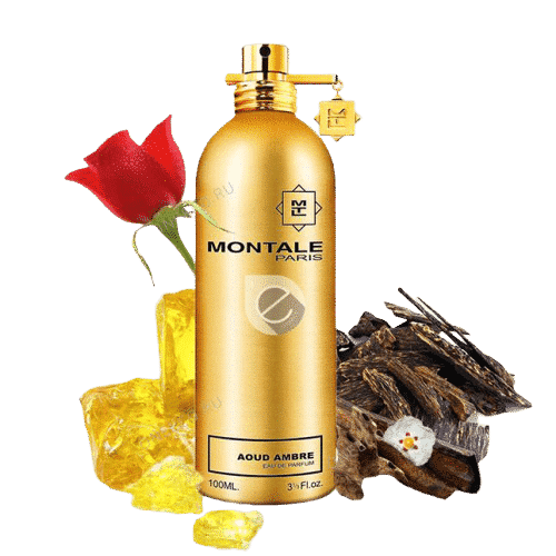 MONTALE AOUD AMBRE3 100ML EDP removebg preview