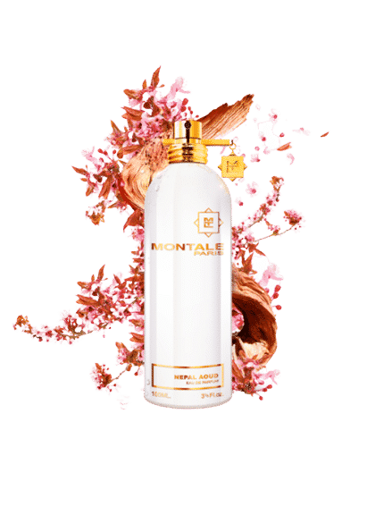 MONTALE PARIS NEPAL AOUD EDP 100ML removebg preview
