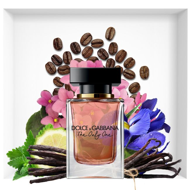 Nước hoa dolce and gabbana the only one